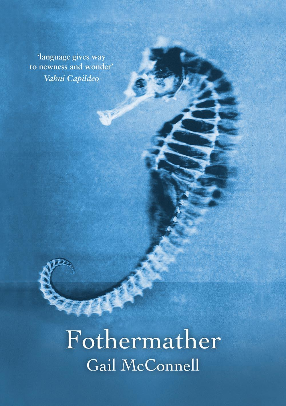 The cover is sea blue with a photo of a seahorse (looking a little skeletal) taking up most of the space. Light on the sea-horse is white. The pamphlet title is white lowercase about an inch from the bottom, with the name of the author somewhat smaller below it, both centred. There is a puff quote from Vahni Capildeo top left, just in front of the seahorse's nose.