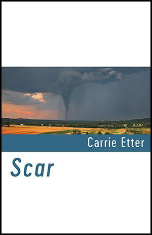 Shearman style cover in three bands. The top third and bottom third are white. The middle band is in full colour and shows a landscape with golden fields and a dark grey sky with tornado approaching. The author's name, right justified in white and lower case, is superimposed on a wide dark blue border at the bottom of the picture. The blue of that border is used for the title which is left justified in very large lower case in the top of the white bottom third. I hope this makes sense!