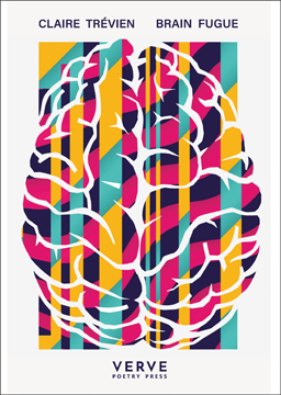 The pamphlet is white as background but most of it is taken up with a very bright and fluid depiction of a human brain. The shape is instantly recognisable outlined in white, but this is against a panel of brightly coloured stripes: turquoise, mustard yellow, bright prink and black (these are the house colours for this pamphlet series). At the top, above the brain on one line is the author's name and pamphlet title in grey caps and exactly the same size. The press name is centred at the foot of the jacket same font and slightly bigger: so VERVE is the biggest word on the page and below it in tiny caps 'poetry press'.
