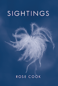 The jacket is deep but not dark blue. The lettering is sans serif caps, white. The title is centred in large caps in the top quarter. The author's name very much smaller is at the foot of the jacket, also centred. In the middle is a beautifully clear but dreamy in mood photo of a seed head of some kind, with long white feathery trails.