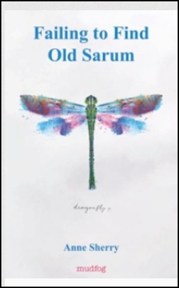 The jacket is white with a large dragonfly placed in the centre and occupying about half the cover. The dominant colour of its beautiful wings is blue (though there is also pink and green). The blue is picked up in the pamphlet title which is large, centred and lower case in the top quarter of the jacket. Below the insect in tiny dark grey italics is the word 'dragonfly'. Centred below this the author's name in small bold blue lowercase. Below the the publisher name, 'mudfog' in lowercase pink.