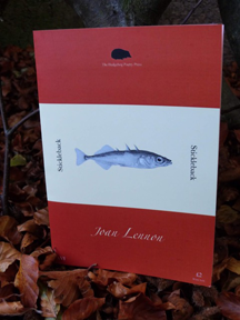 This is a photograph of the pamphlet set against a bed of autumn leaves. The pamphlet is orange with a very wide white band in the middle that occupies at least one third of the area. The white band features a monochrome picture of a stickleback and the word Stickleback appears to both right and left of the fish running vertically.  The author's name appears in white, centred, italicised, below the fish against the orange background. At the top of the jacket (orange area) there is a little black hedgehog (the publisher logo) with The Hedgehog Poetry Press in tiny white writing below it.