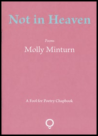 The jacket is a rich pink. The collection title is large, lower-case and bluey green, centred in the top 25% of the jacket. Just above the middle there two lines of white lettering. The first says 'Poems' in tiny italics. The second, much larger regular lowercase, is the name of the author. At the foot of the jacket, the publisher's logo appears in white: it is a circle sitting in a small V. The words 'A Fool for Poetry Chapbook' appear in small white italics about an inch above the logo.