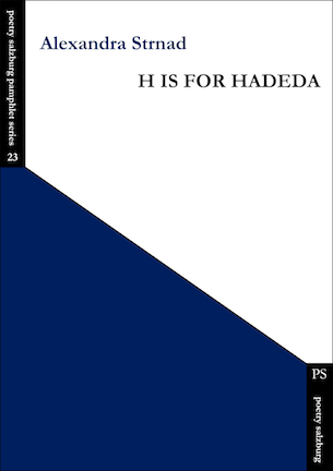 Cover is divided into two colours diagonally. The lower triangle (tall to the left, short to the right) is dark blue. The top triangle is white. Name of lauthor is in the blue of the bottom triangle, lower case, left justified. The pamphlet title is also blue but in small caps right justified.