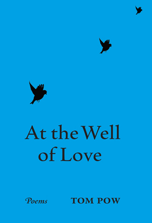 Cover is entirely a deep sky blue. The collection title is lower case large letters centred in the bottom half. Three black birds fly upwards in a diagonal from the A of 'At the well', getting smaller as they go, so the one in the top right hand corner of the jacket is very small indeed.